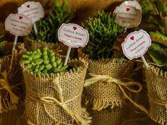 Lembrancinhas ecológicas: um presente para os convidados e para o meio ambiente