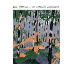 The Changing Wilderness Will Stratton Album