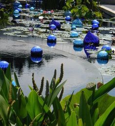 """Likely Chihuly """"Onions""""."""