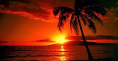 August 21 – Hawaii's statehood