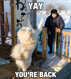 I wish I were greeted like this by my family when I come home...