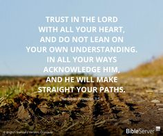 Read this #BibleVerse on BibleServer | Proverbs 3:5-6