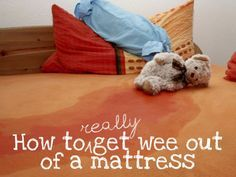 How to get wee out of a mattress - just in case