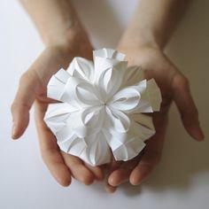 Image of Bloom--Matthew Schlain