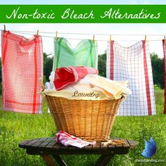 Truly Effective and Non-toxic Bleach Alternatives from thesoftlanding.com