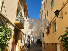 The Old Town of Calpe Celebrating Their Fiestas - With The Creatures of the seas Jellyfish have been created in this Street. Stuff To Do, Things To Do, Old Things, Moraira, Event Calendar, Sandy Beaches, Outdoor Life, Jellyfish, Seas