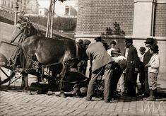 """Navegação por local """"São Paulo"""" Limpeza pública, """"Exaustão"""", Pastore Vicenzo, 1912"""