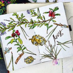 Memories of thePine forest sketch by Ekaterina Churakova