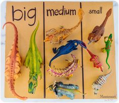 Preschool At Home, Preschool Curriculum, Preschool Lessons, Preschool Classroom, Preschool Learning, Kindergarten, Homeschooling, Dinosaur Classroom, Dinosaur Theme Preschool