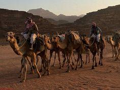 Viajes a Jordania: Viajes a Jordania - Wadi Rum