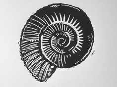 Fossil / shell - linocut print - Ieuan Edwards, U.K.