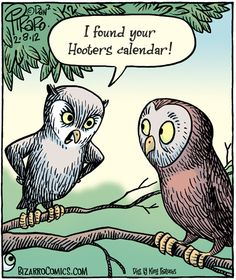 """I found your Hooters calendar!"" Bizarro Toon by Dan Piraro"