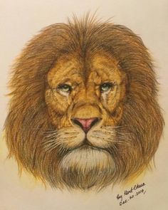 The Great Roar Arise In Your Heart Is The Roar Of Freedom. Original Handwork Faber Castell Color Pencil Details Drawing By Kent Chua. Love Drawings, Art Drawings, Drawing Art, Classic Cars, Freedom, Poster Prints, Cute Animals, African, Canvas