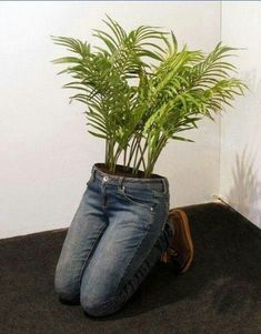 14 MindBlowing DIY Ideas With Old Jeans Turn To Unique Flower Planters is part of Garden - If you've been looking for a quaint and quirky way to make use of those old jeans you just can't wear any longer, we've come across a few brilliant projects Garden Crafts, Garden Projects, Garden Ideas, Diy Crafts, Garden Tools, Diy Projects, Flower Planters, Flower Pots, Diy Flower