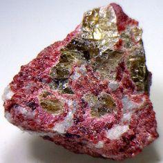 rock collecting « Talkin' Rocks