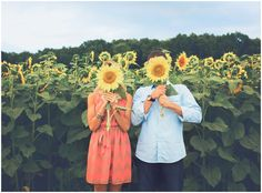 Fun engagement portrait of the bride and groom to be holding sunflowers at the sunflower field  wedding photography RI                                                                                                                                                      More