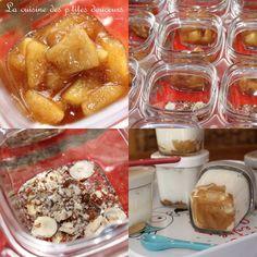 yaourts aux pommes et à la cannelle et yaourts miel noisettes
