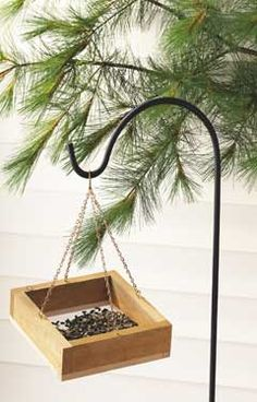 Feeder on a Dime  Save time and money with this simple feeder that songbirds will love! Platform feeders are one of the most popular options for attracting backyard birds. You could easily spend $50, $75 or more to buy one, but don't waste your money! Instead, build your own for less than $10!