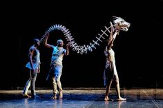 The Firebird: giant puppets and dance – on at Artscape, Cape Town and then the 2016 National Arts Festival and then a six city tour of the U. Bird Puppet, Marionette Puppet, Puppets, Puppetry Theatre, Puppet Costume, Giant Animals, Librarian Style, Puppet Making, Pantomime