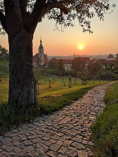 The dawn in Seminary garden, Lesser Town, Prague, Czechia