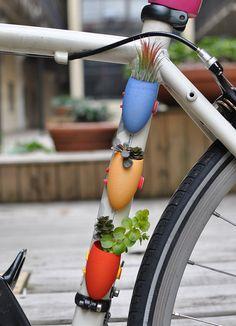 fiets plantjes!
