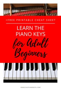 Learn the piano keys for adult beginners -- A detailed explanation of the keys on the piano, with images AND a FREE printable visual cheat sheet to make learning the piano keys EASY! Learn Piano Beginner, Beginner Piano Music, Piano Lessons For Beginners, Easy Piano Sheet Music, Vocal Lessons, Music Lessons, Guitar Lessons, Piano Teaching, Learning Piano
