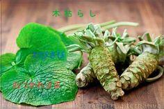 ¿Conoces las 10 palabras japonesas que no existen en español? En la cultura japonesa, la gente tiene un gran aprecio hacia la naturaleza y es muy importante el respeto y el ser amable con los demás. La cortesía y la apreciación de la naturaleza se reflejan en su idioma y en la creación de algunas …
