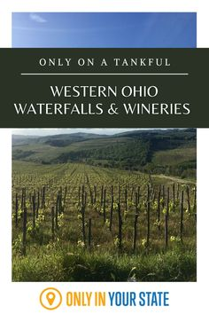 Enjoy delicious, award-winning wines and a beautiful waterfall on this fantastic wine and waterfalls road trip through Western Ohio. It's one of the best local adventures! Ohio Waterfalls, The Buckeye State, Beautiful Waterfalls, Haunted Places, Covered Bridges, Day Trip, Small Towns, Us Travel, Road Trips