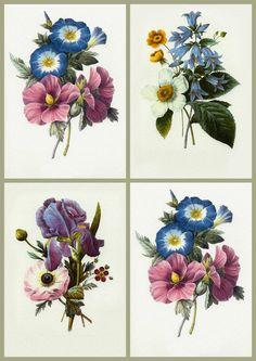Vintage Floral Prints | ArtbyJean - Vintage Clip Art: Four Vintage Prints - Collage Sheet