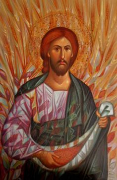 Sermon on the Parable of the Sower (22nd Sunday after Pentecost, 2015)