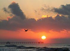 The Public Beach Gulf Shores Alabama.