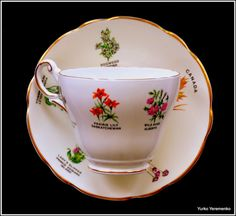 Royal Darwood vintage tea duo including cup and saucer in well sought-after collectable (especially in Canada) pattern Canada Botanic Garden, reflecting symbolic plants and flowers of all 10 Canadian provinces and territories. Absolutely stunning piece and great gift idea for dedicated horticulturist or Canadian bone china collectors. #CanadaDay