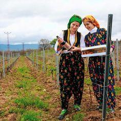 Trakya Bağ Rotası Kırklareli Tekirdağ Şarköy ve Gelibolu olmak üzere dört ana bölgede toplanıyor. Rota boyunca yeni lezzetler keşfetmek köy yaşamını deneyimlemek mümkün.  Görsel: Kerem Yüce #kivi #kivivakaetudu #nasjonaleturistveger #Kirklareli #Tekirdag #Sarkoy #Gelibolu #Turkey#village #ciudad #route