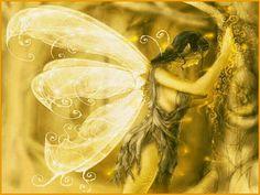 Yellow fairy