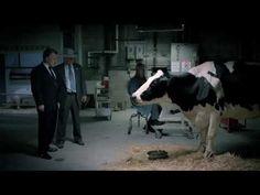 """Article -L'ADN / """"Chipotle lance sa série télé : Farmed and Dangerous"""" / La chaîne de restauration rapide qui avait déjà marqué les esprits avec des films d'animation engagés lance le 17 février, sur Hulu, une série satirique sur le monde de l'agriculture. une première saison composée de quatre épisodes de 30 minutes. Les personnages et l'intrigue reflètent la position de Chipotle sur l'agriculture durable. / #chipotle #serie #TVshow #BrandContent"""