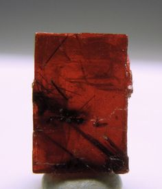 Villiaumite (Rare Mineral) included with Aegirine crystals ~  Location:	Lovozero, Kola, Russia