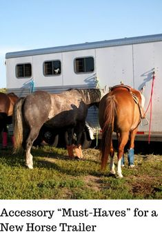 """From our years of hauling horses, we put together a comprehensive list of necessities and """"must-haves"""" for horse trailers. Horse Stalls, Horse Barns, Horse Saddles, Western Saddles, Western Tack, Horse Trailer Organization, Rv Organization, Horse Training, Training Tips"""