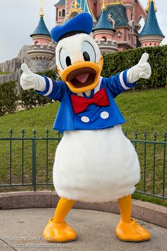 Donald Duck at Disney Character Central