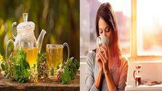 Com Este Poderoso Chá Você Fortalecerá a Imunidade do Corpo em Apenas 2 ...