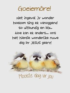 Lekker Dag, Afrikaanse Quotes, Goeie More, Good Morning Wishes, Prayer Quotes, Inspirational Quotes, Sayings, Blessings, Night