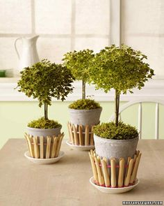Clothespin Picket Fence | Martha Stewart Living - Dress your potted plants in a picket fence made from clothespins.