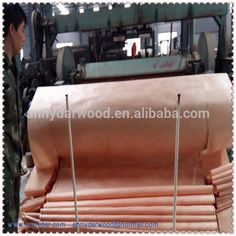 A B C D Grade okoume/ Bintangor / Keruing Wood Face Veneer / PLB 0.25mm Okoume wood Veneer to India Market hight quolity