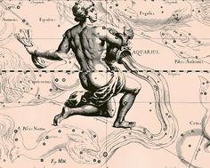 Sisters' Warehouse: Stampe Segni Zodiacali - Antique Zodiac Signs Illu...