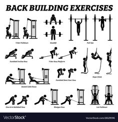 Big Biceps Workout, Back Workout Men, Gym Workouts For Men, Weight Lifting Workouts, Gym Workout For Beginners, Fitness Workout For Women, Form Fitness, Back Workout Machine, Weight Machine Workout