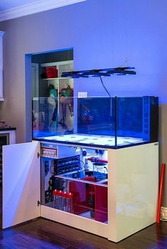 Saltwater Aquarium Fish - Find incredible deals on Saltwater Aquarium Fish and Saltwater Aquarium Fish accessories. Let us show you how to save money on Saltwater Aquarium Fish NOW! Saltwater Aquarium Setup, Aquarium Sump, Aquarium Terrarium, Saltwater Fish Tanks, Aquarium Stand, Home Aquarium, Aquarium Design, Marine Aquarium, Reef Aquarium