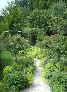 Der Weg durchs Gartenglück: Gerade Wege lassen sich geschickt auflockern, indem man am Rand Stauden wie zum Beispiel Frauenmantel pflanzt.