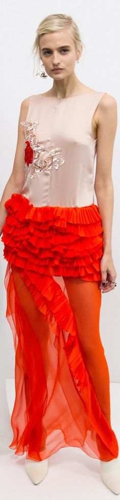 Christian Dior Spring 2016 Couture women fashion outfit clothing style apparel @roressclothes closet ideas
