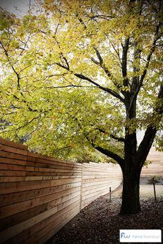Horizontal board privacy fence.