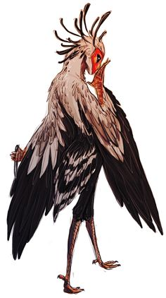 possible sketchy design of tsu's secretary bird monster, zantetsuryuu
