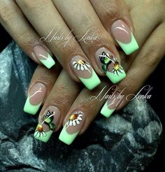 Butterflies n flowers
